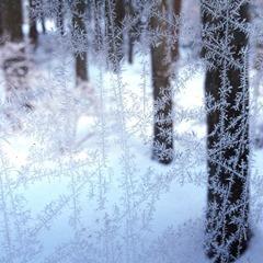 winter_window